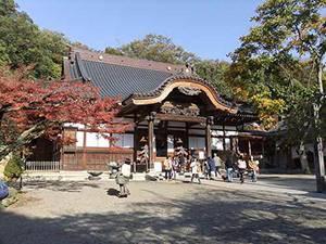 setsubun_jindaiji