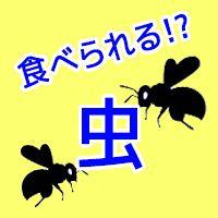 mushi_eye