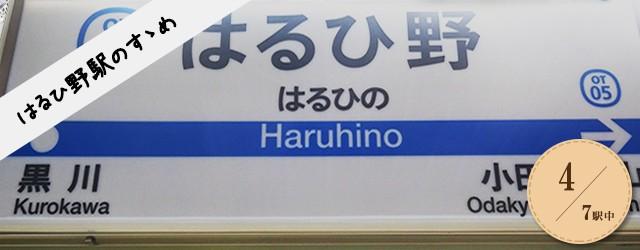 haruhino_head