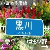kurokawa_eye