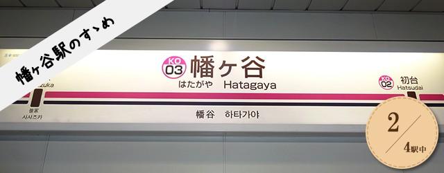 hatagaya_head