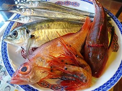 空輸で仕入れている本日の魚介類